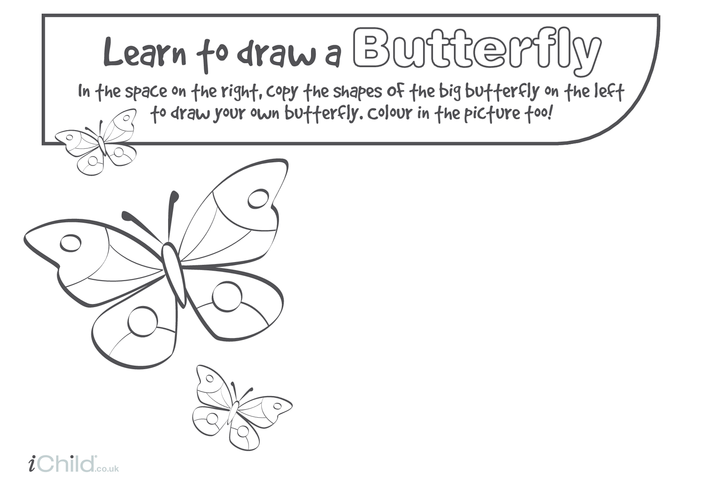 Thumbnail image for the Learn to Draw a Butterfly activity.