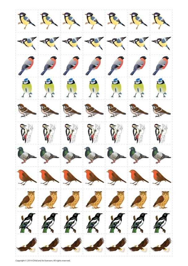 Birds Reward Chart Sticker Sheet