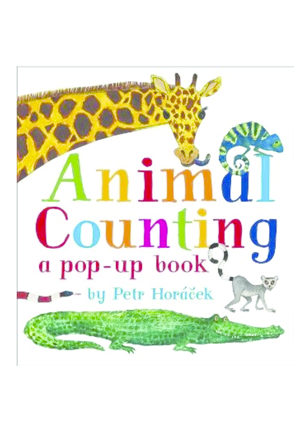 Animal Counting Video
