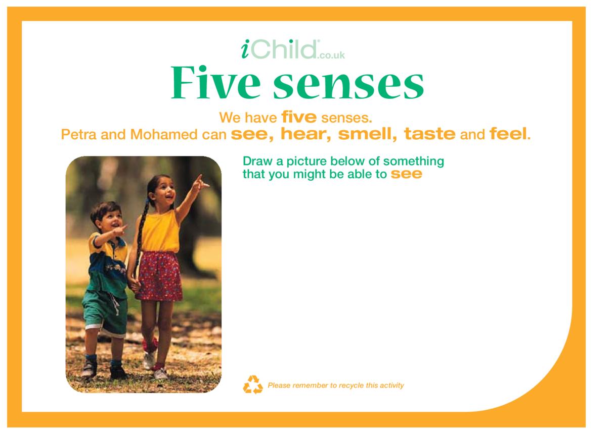Five Senses 1
