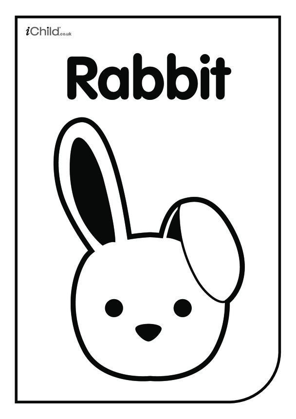 Black & White Poster: Bunny Face