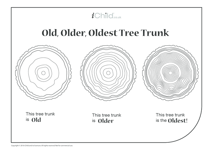 Thumbnail image for the Old, Older, Oldest Tree Trunks activity.