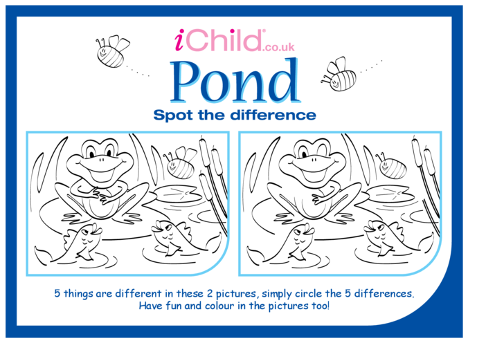 Thumbnail image for the Pond Life Spot the Difference activity.
