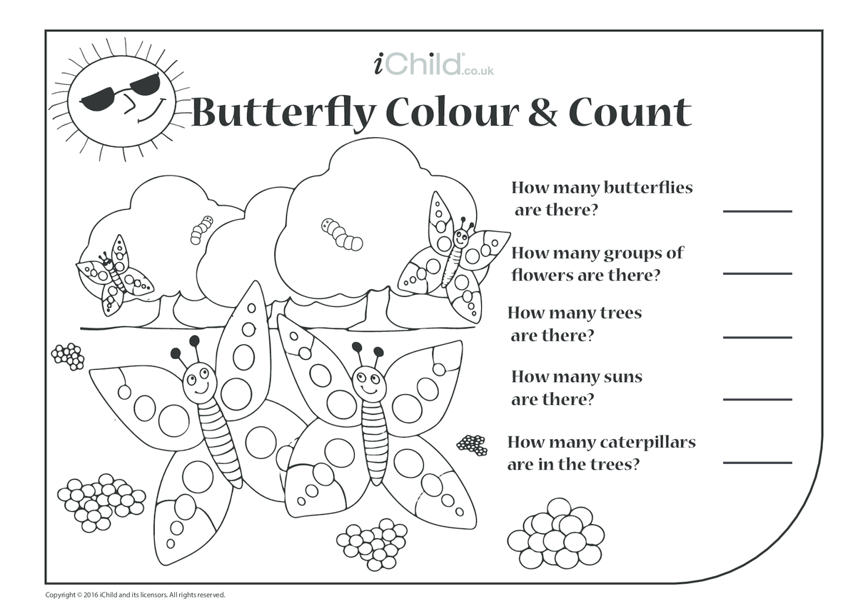 Butterfly Colour in & Count