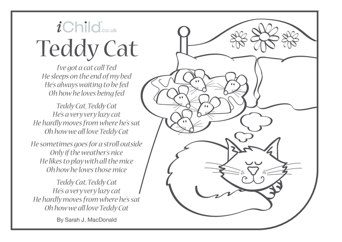Thumbnail image for the Cat Song 'Teddy Cat' Lyrics Colouring-In Sheet activity.