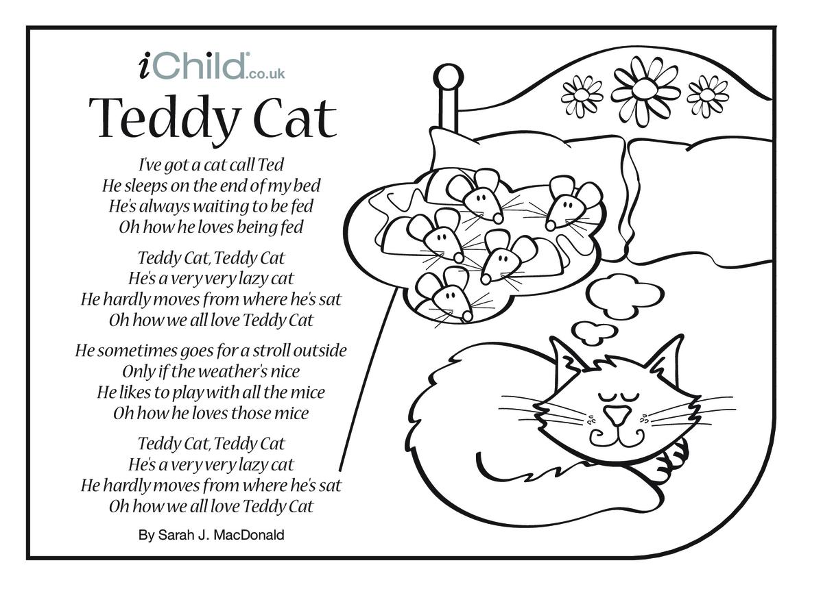 Cat Song 'Teddy Cat' Lyrics Colouring-In Sheet