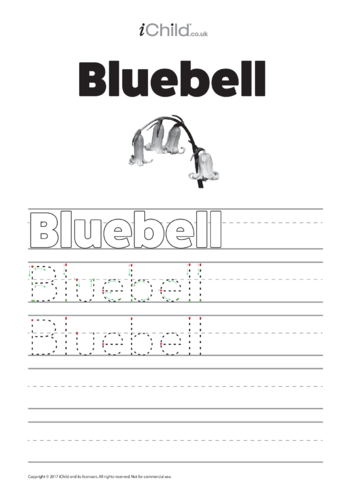 Thumbnail image for the Bluebell  Handwriting Practice Sheet activity.