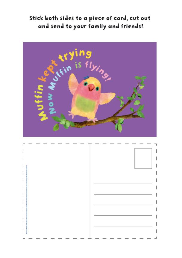 3rd & Bird Muffin Postcard