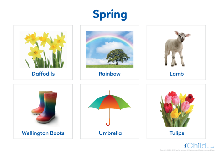Thumbnail image for the Spring - Photo Flashcard activity.