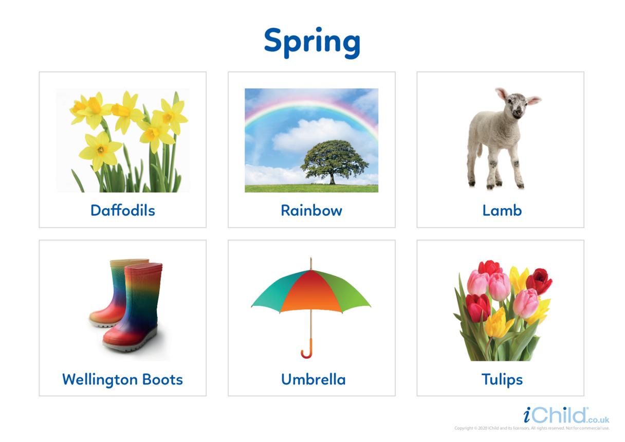Spring - Photo Flashcard