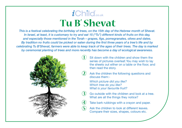 Thumbnail image for the Tu B'Shevat Religious Festival Story activity.