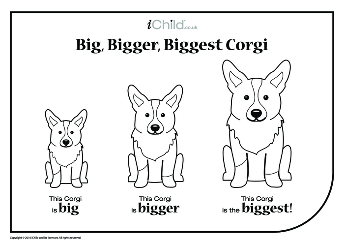 Thumbnail image for the Big, Bigger, Biggest Corgi activity.