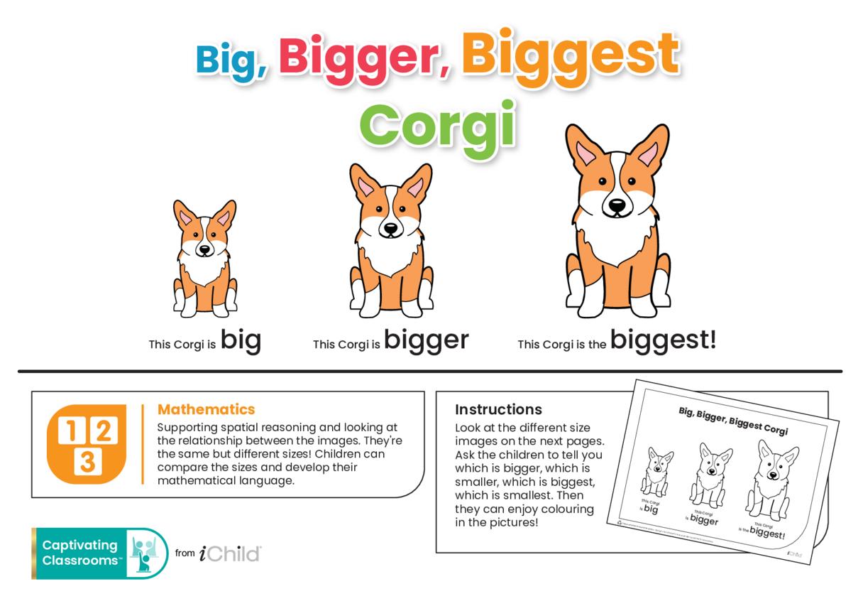 Big, Bigger, Biggest Corgi