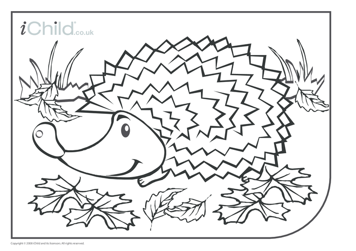 Thumbnail image for the Hedgehog Colouring in picture activity.