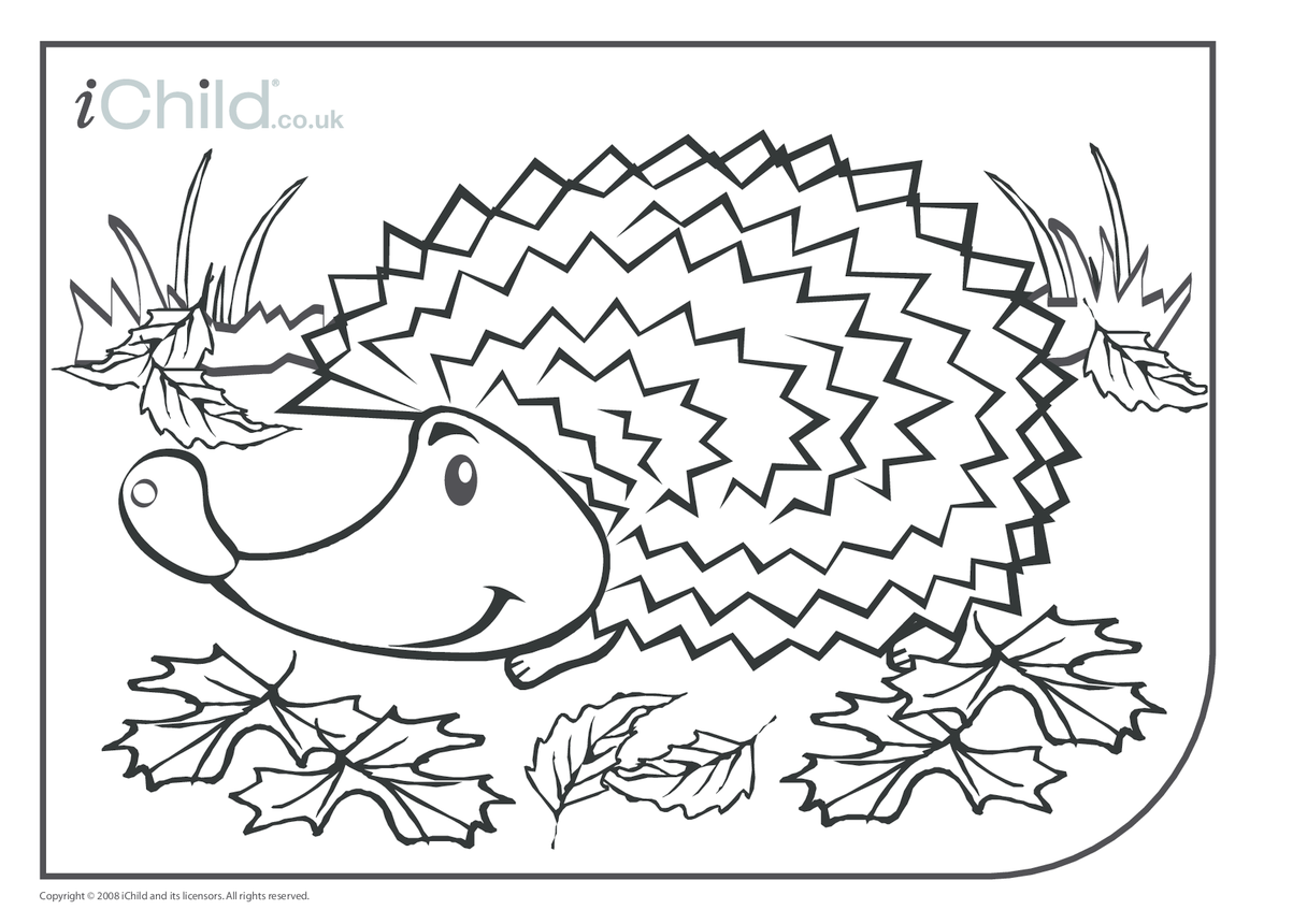 Hedgehog Colouring in picture