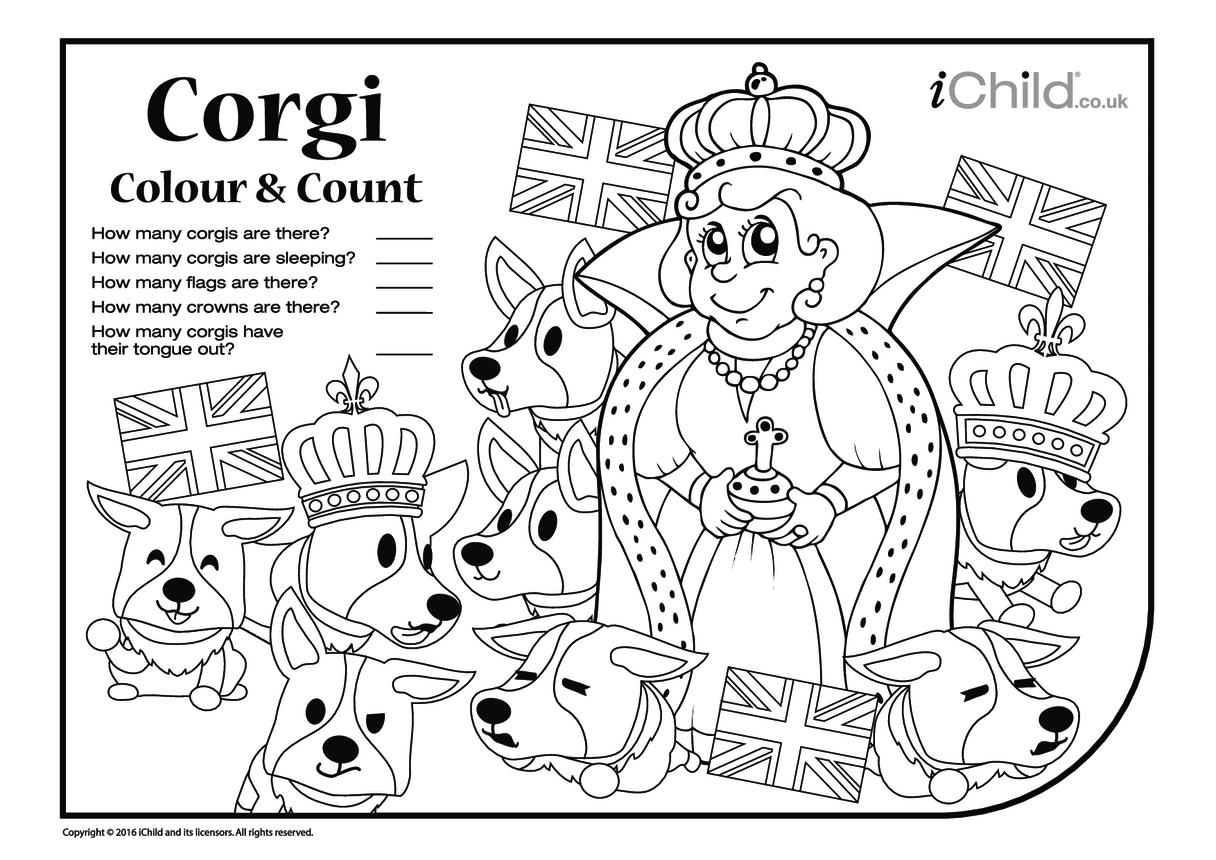 Corgi Colour In & Count