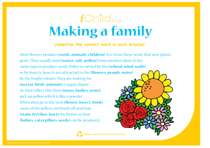 Thumbnail image for the Making a Family activity.
