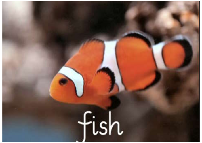 Thumbnail image for the Introduction to the 'F' phoneme activity.