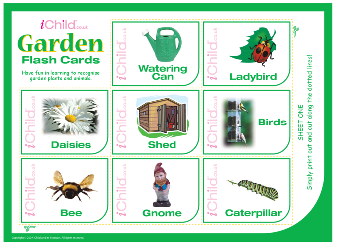 Thumbnail image for the Garden Flash Cards activity.