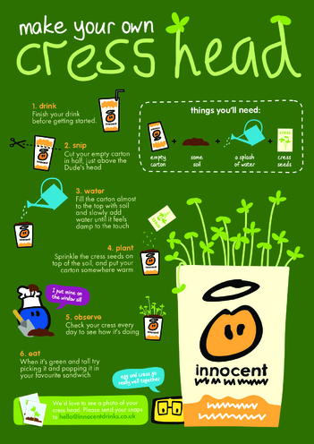 Thumbnail image for the innocent - Make your own Cress Head activity.