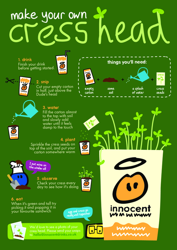 innocent - Make your own Cress Head