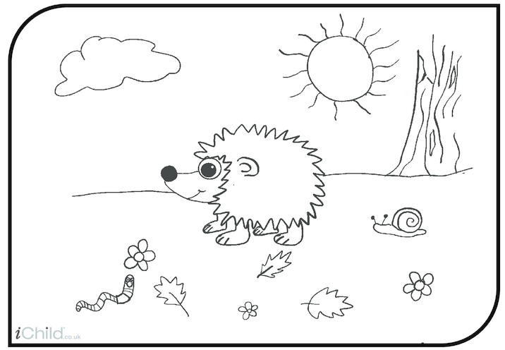 Thumbnail image for the Hedgehog activity.