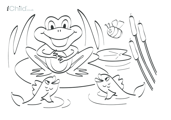 Thumbnail image for the Frog Colouring in picture activity.