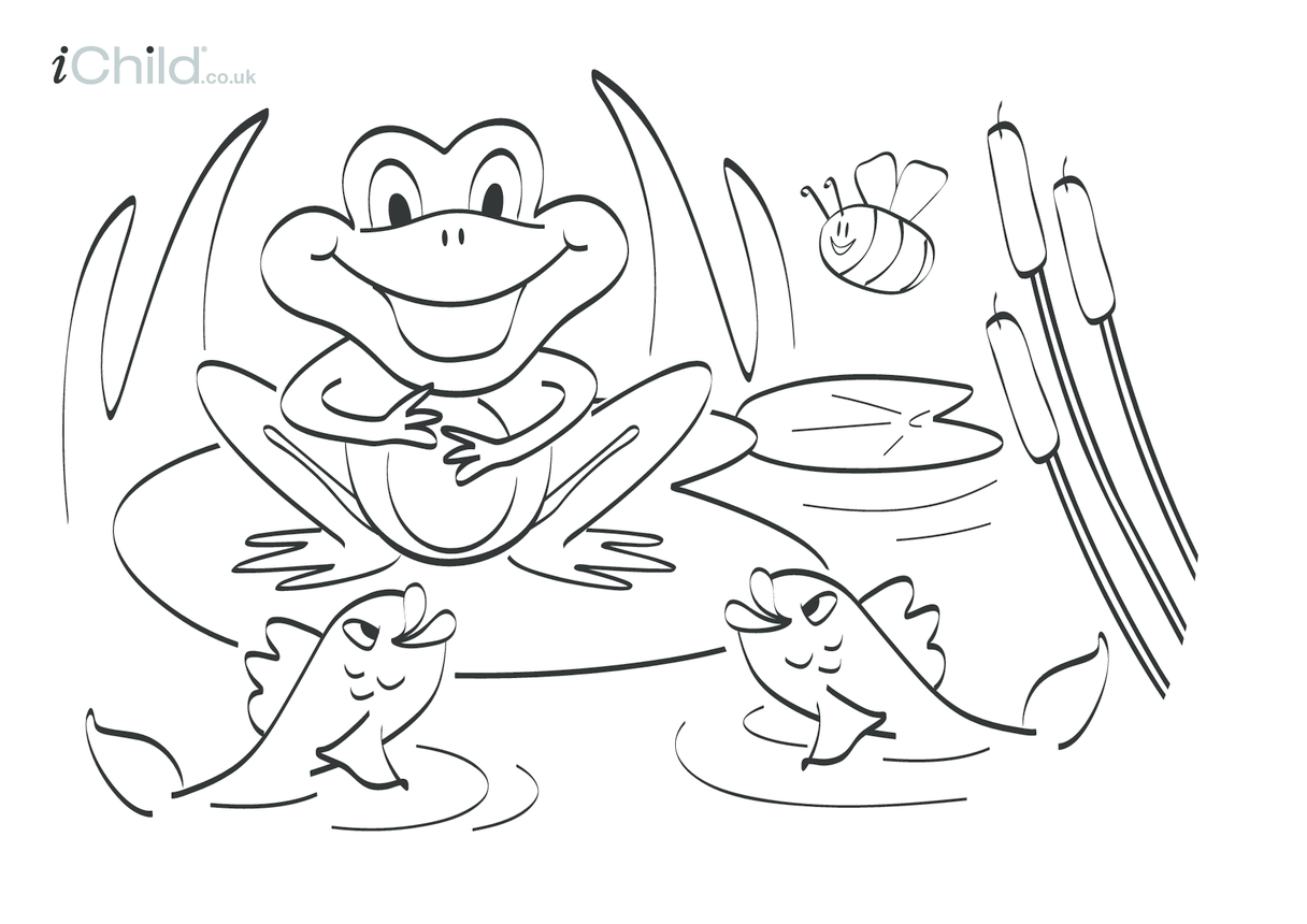 Frog Colouring in picture