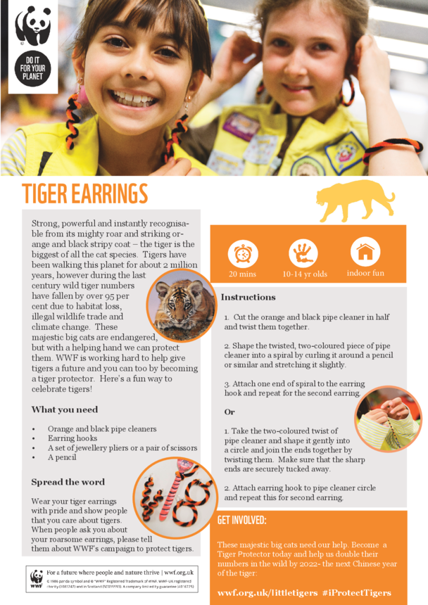 WWF Tiger Earrings