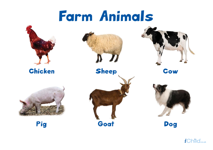 Thumbnail image for the Farm Animals Poster activity.