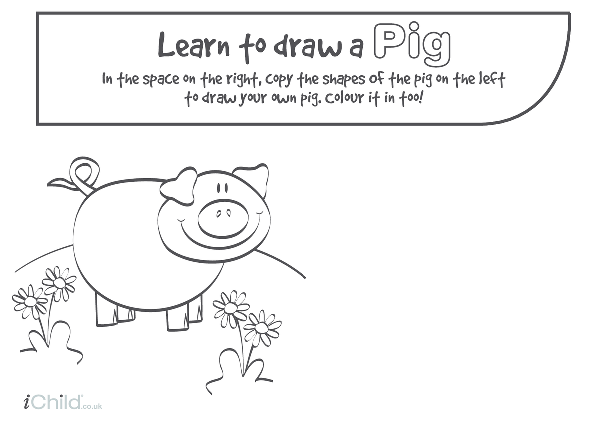 Learn to Draw a Pig