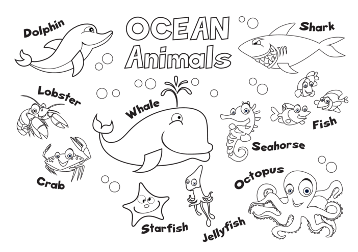 Thumbnail image for the Animals of the Ocean (black & white) - Signs & Posters activity.