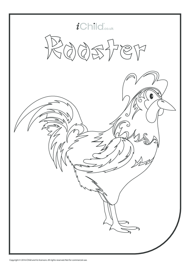 Rooster Colouring in Picture