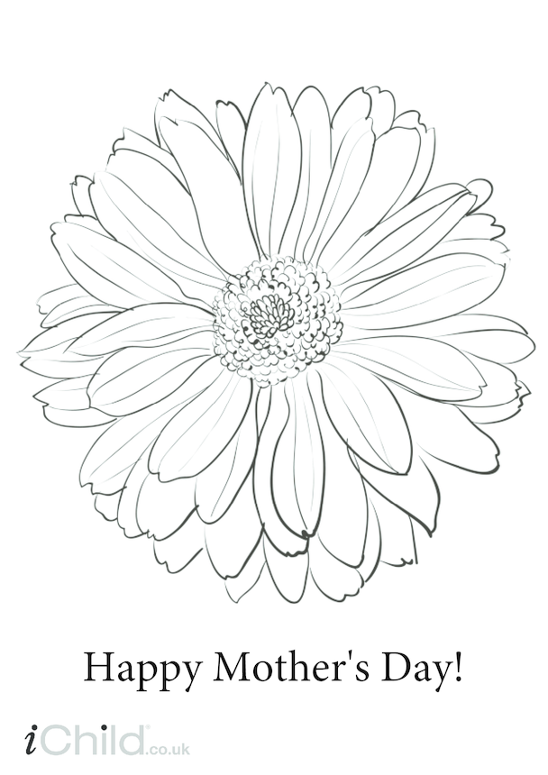 Mother's Day Colour In Flower