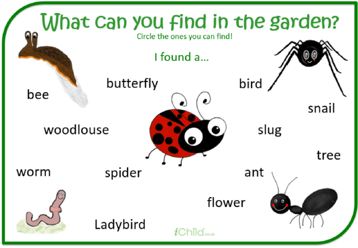 Thumbnail image for the What can you find in the garden? activity.