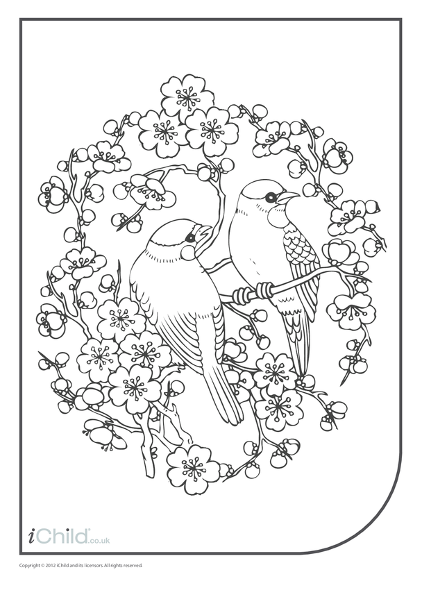 Blossom Colouring in Picture