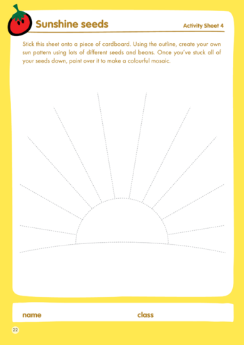 Thumbnail image for the innocent - Lesson Plan 4 Activity - Sunshine seeds activity.