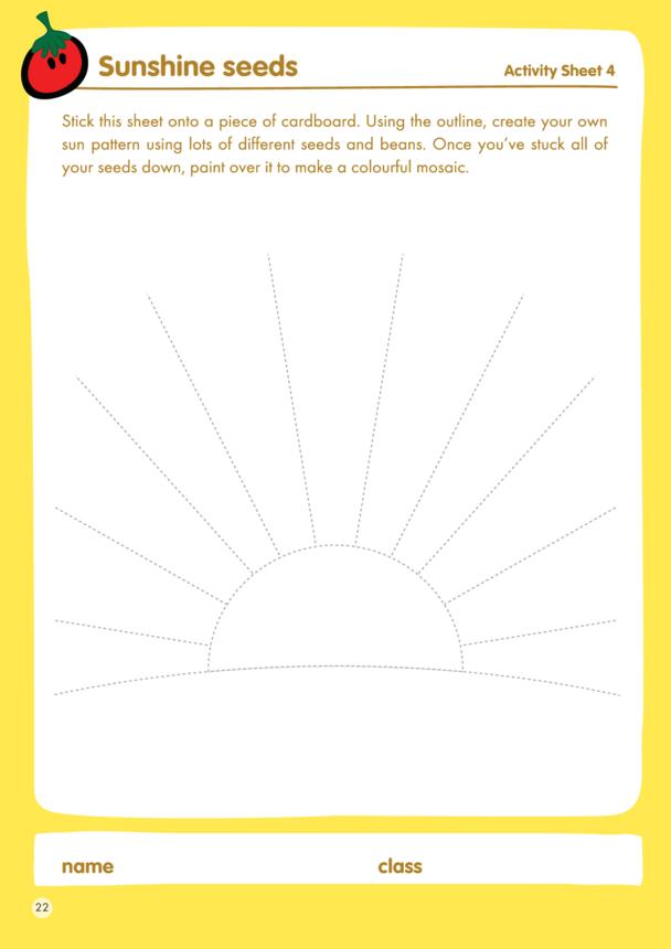 innocent - Lesson Plan 4 Activity - Sunshine seeds