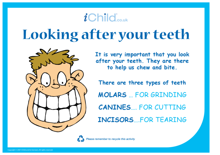 Thumbnail image for the Looking after your teeth activity.