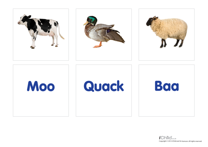 Thumbnail image for the Animal Sounds 1 - Photo Flashcard activity.