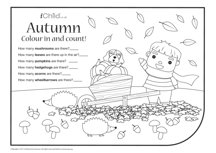Thumbnail image for the Autumn Colour in & Count activity.