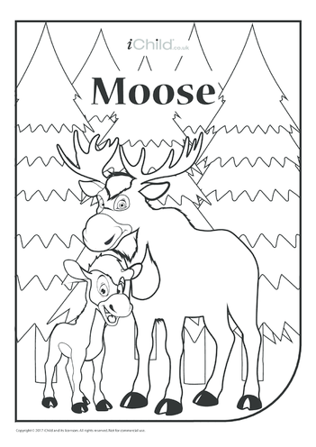 Thumbnail image for the Canada Day Moose Colouring in Picture activity.