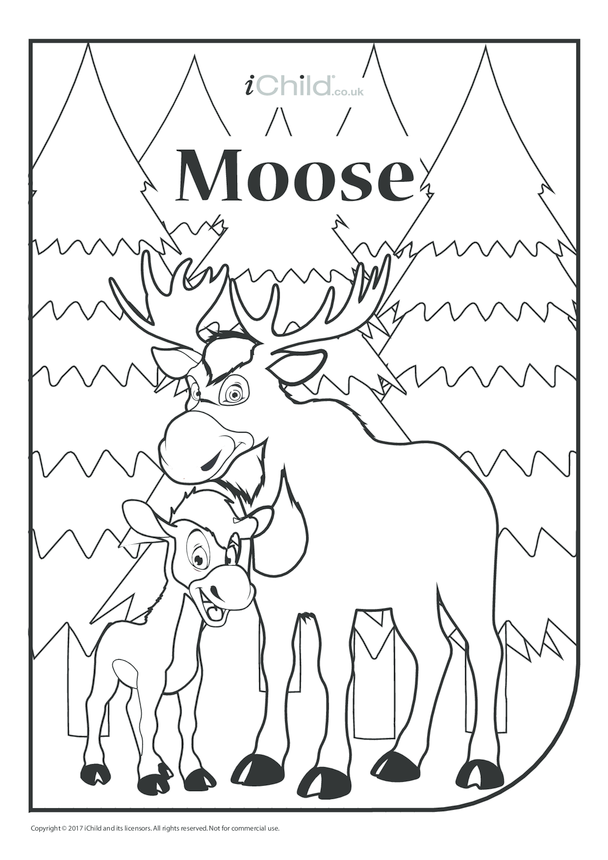 Canada Day Moose Colouring in Picture