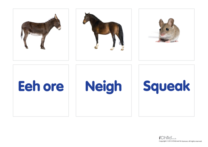 Thumbnail image for the Animal Sounds 4 - Photo Flashcard activity.
