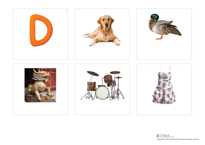 Thumbnail image for the Letter of the Alphabet: D - Photo Flashcard activity.