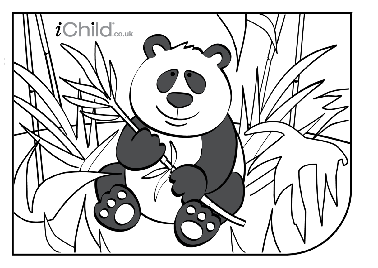 Giant Panda Colouring in picture