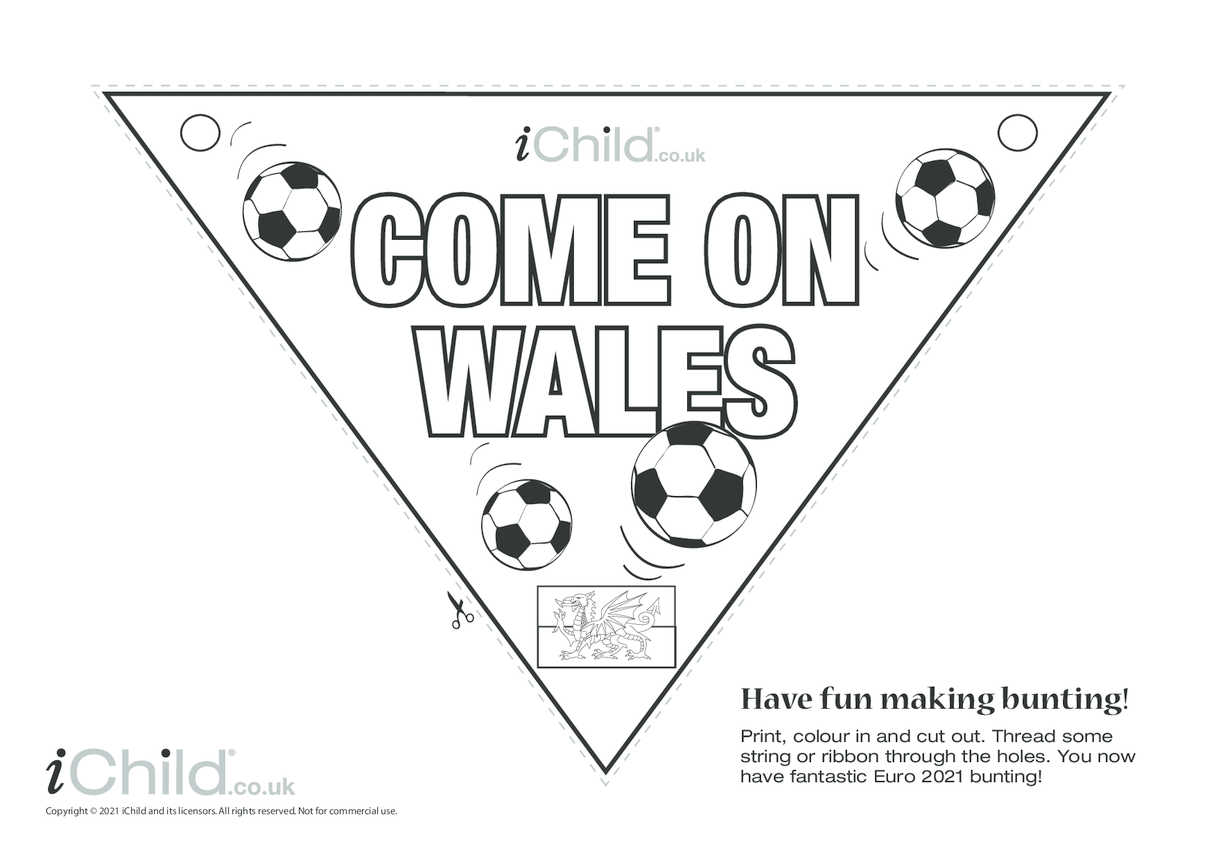 Come on Wales Football Bunting ( B & W)