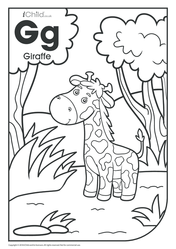 G is for Giraffe Colouring in Picture