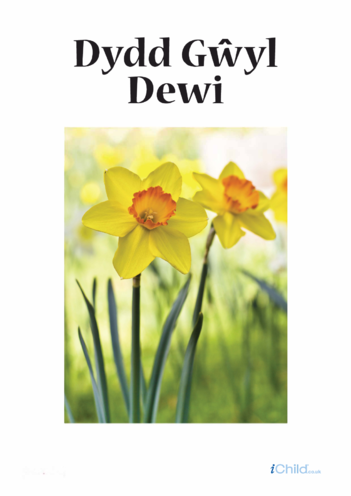 Thumbnail image for the Dydd Gwyl Dewi Poster activity.