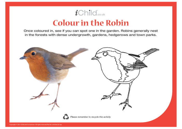 Thumbnail image for the Colour in the Robin activity.